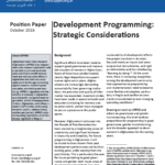 Position Paper: Development Programming – Strategic Considerations